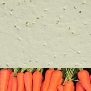 Carrot_new_cream