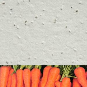 Carrot_new_white