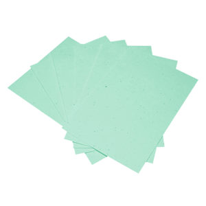 Paper_Green
