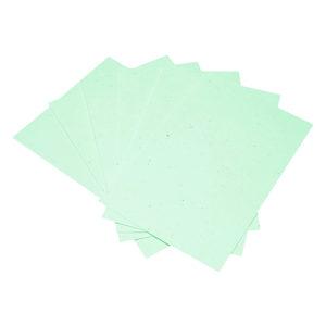 Paper_PastelGreen