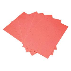 Paper_RedBricks