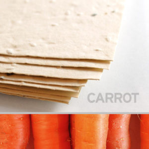 carrot_plantable_seed_paper_11x17_cream.t1441115069