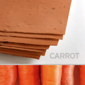 carrot_plantable_seed_paper_11x17_orange.t1441115069