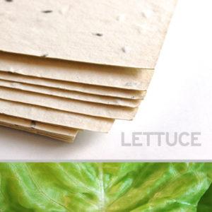 lettuce_plantable_seed_paper_11x17_cream.t1441115070