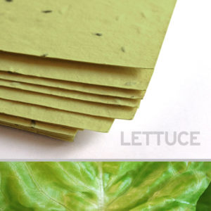 lettuce_plantable_seed_paper_11x17_green.t1441115070