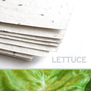 lettuce_plantable_seed_paper_11x17_white.t1441115055