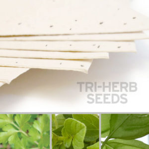 plantable_seed_paper_11x17_cream.1.t1441115070