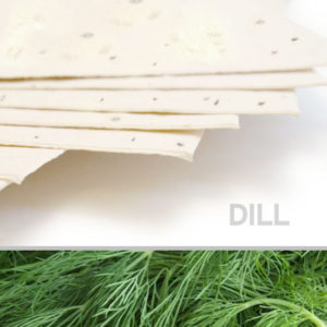 plantable_seed_paper_11x17_dill_cream.t1441115070