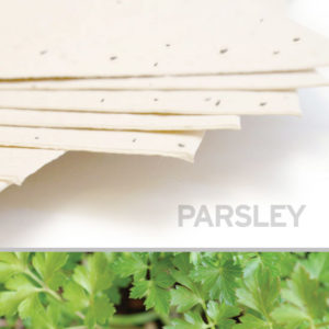 plantable_seed_paper_11x17_parsley_cream.t1441115070