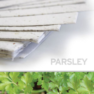 plantable_seed_paper_11x17_parsley_white.t1441115070