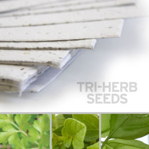plantable_seed_paper_11x17_white.1.t1441115070