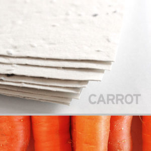 thumb.product.tomato_plantable_seed_paper_8_5x11_white.t1441115071
