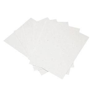 Paper_White